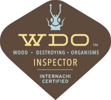 Oklahoma City Termite Inspection